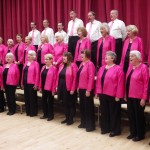 photo of brigg singers during a concert